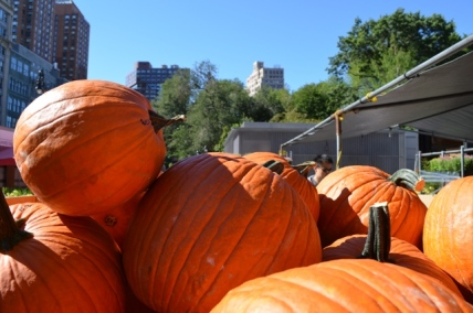 Union Square Greenmarket Pumpkins
