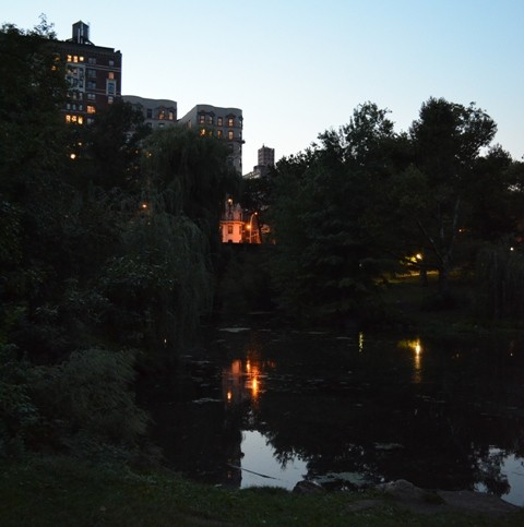 Evenings at The Pool in Central Park