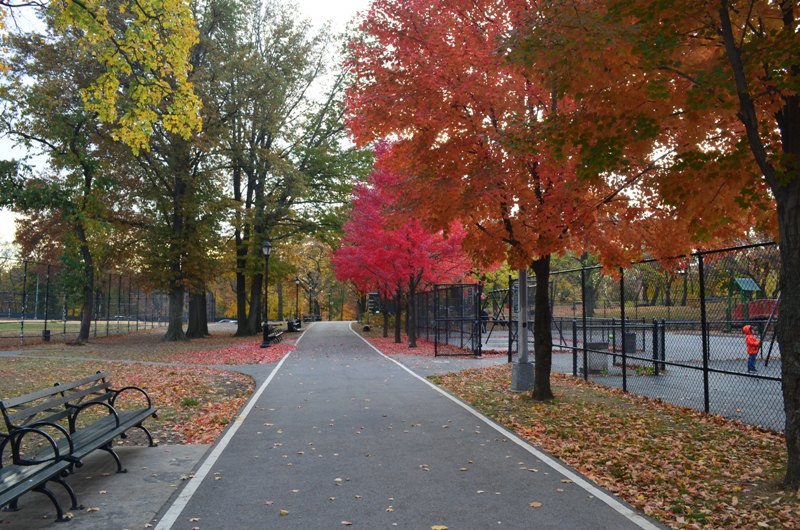 Bike Path in the Bronx