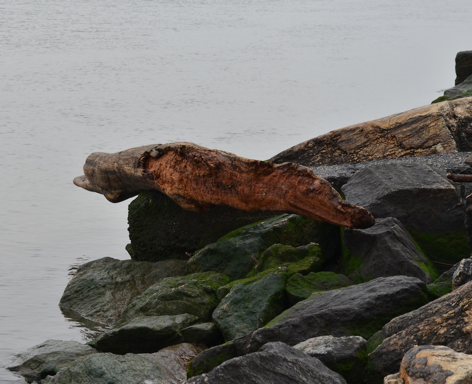Drift Wood II in Riverside Park