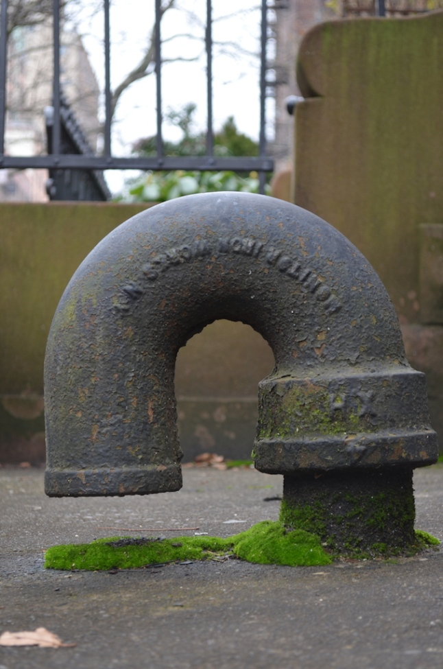 Pipe with Moss