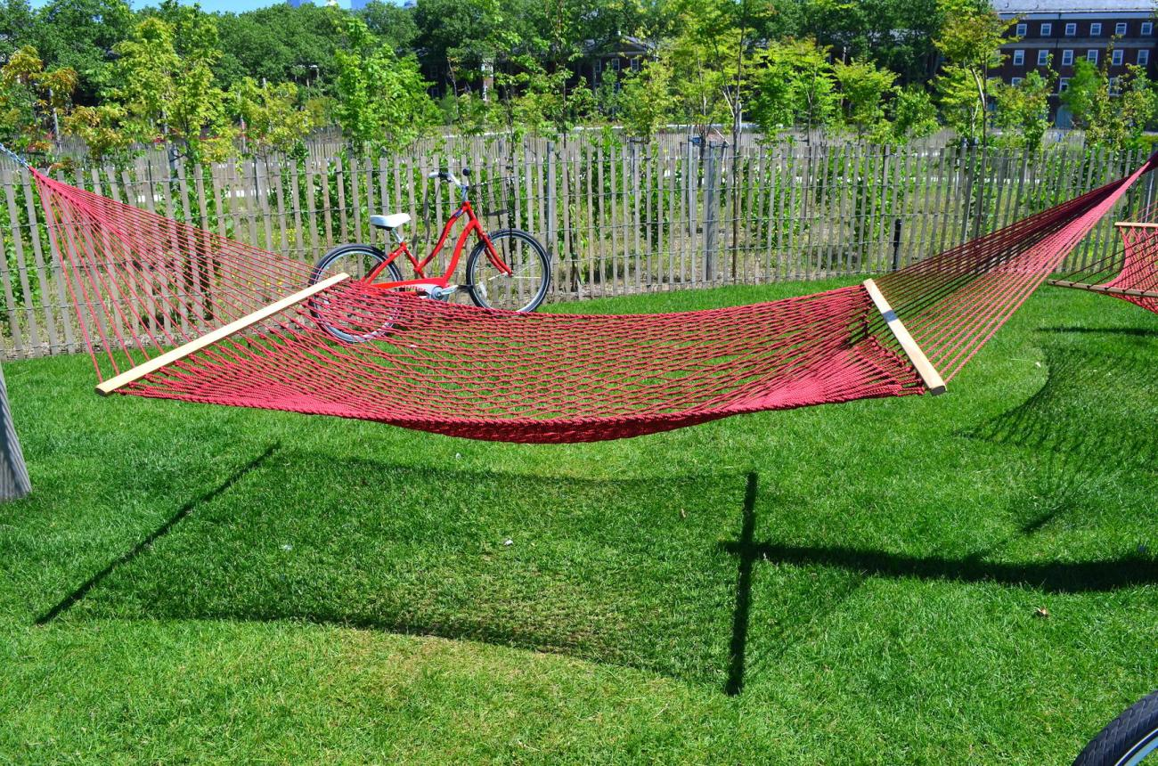 Cruiser Bike and Hammock on Governors Island