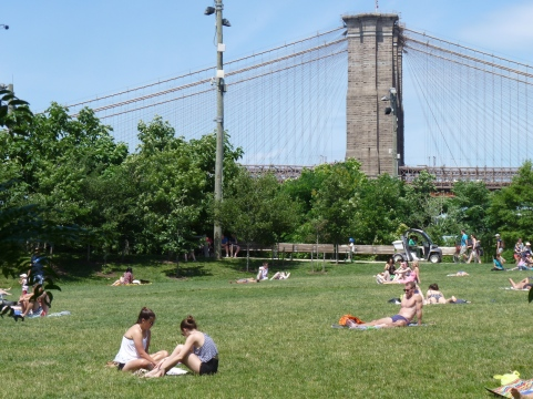 Sunbathe by the Brooklyn Bridge