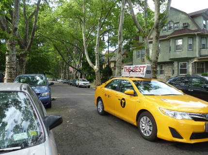 Tree Lines Streets 1