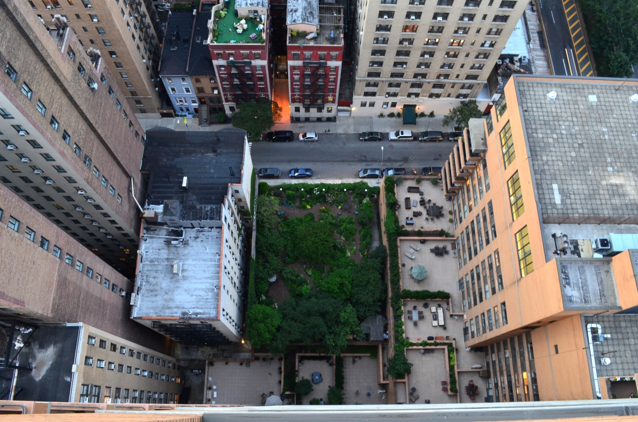 Lotus Garden From Above - 97th Street Between Broadway and Amsterdam