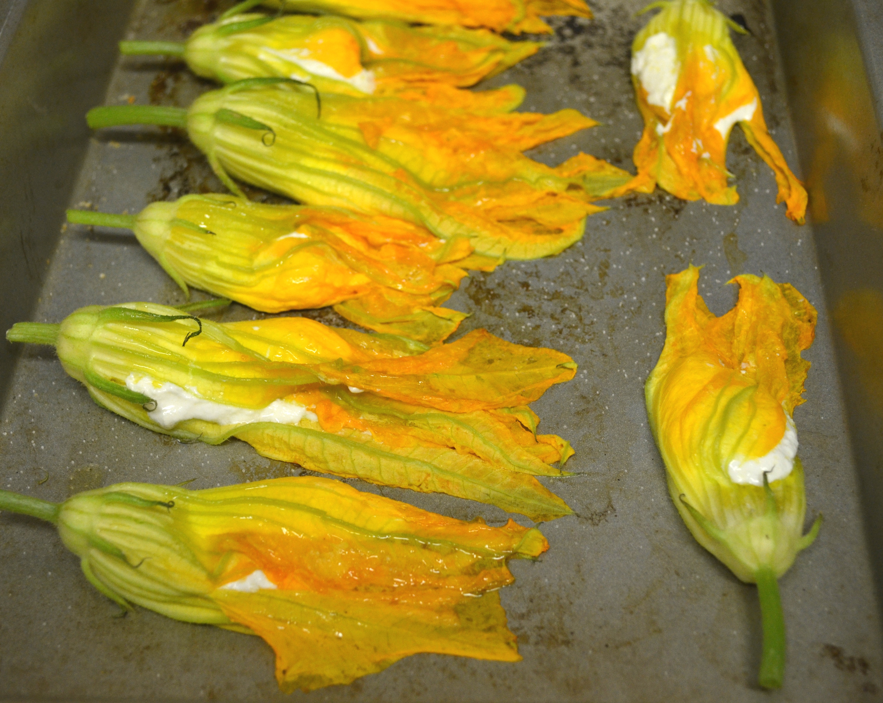 Ricotta Cheese Stuffed Zucchini Flowers
