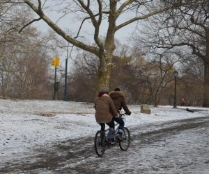Tandem Bike in Central Park During the Winter