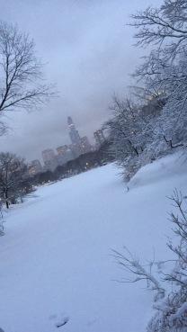 Snowy Big Apple
