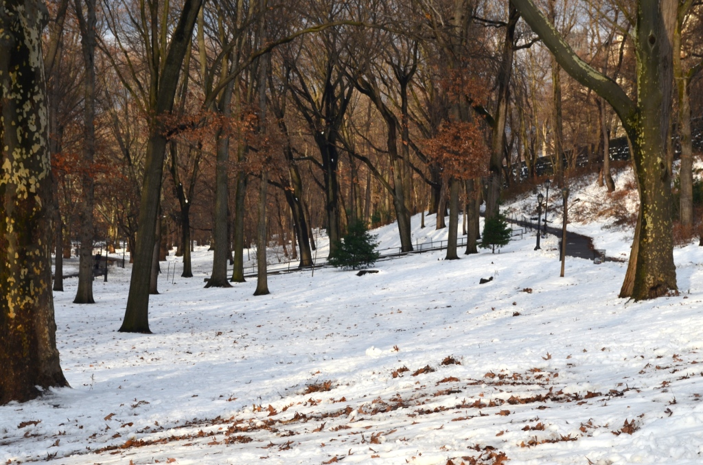 Winter in Riverside Park