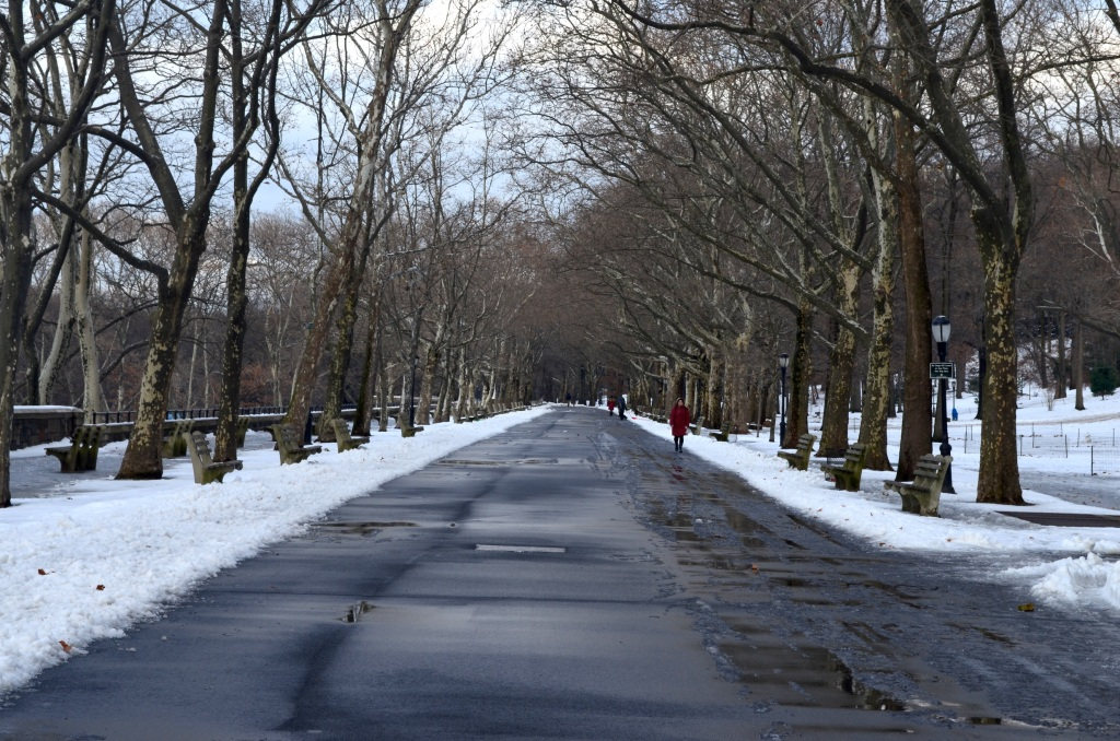 Winter Path in Riverside Park