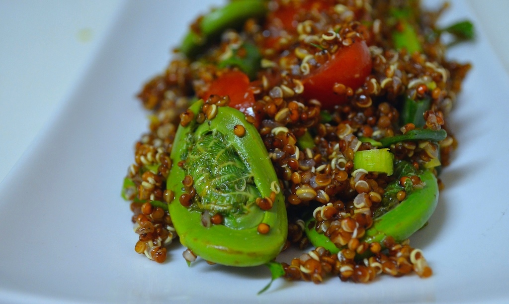 Red Quinoa and Spring Fiddlehead Salad (1)
