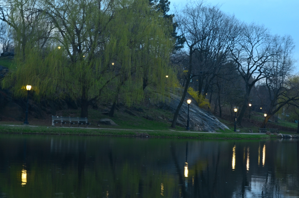 5 things to do at the harlem meer in central park full for Things to do in central ny
