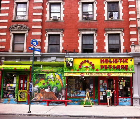Holistic Pet Care in the East Village