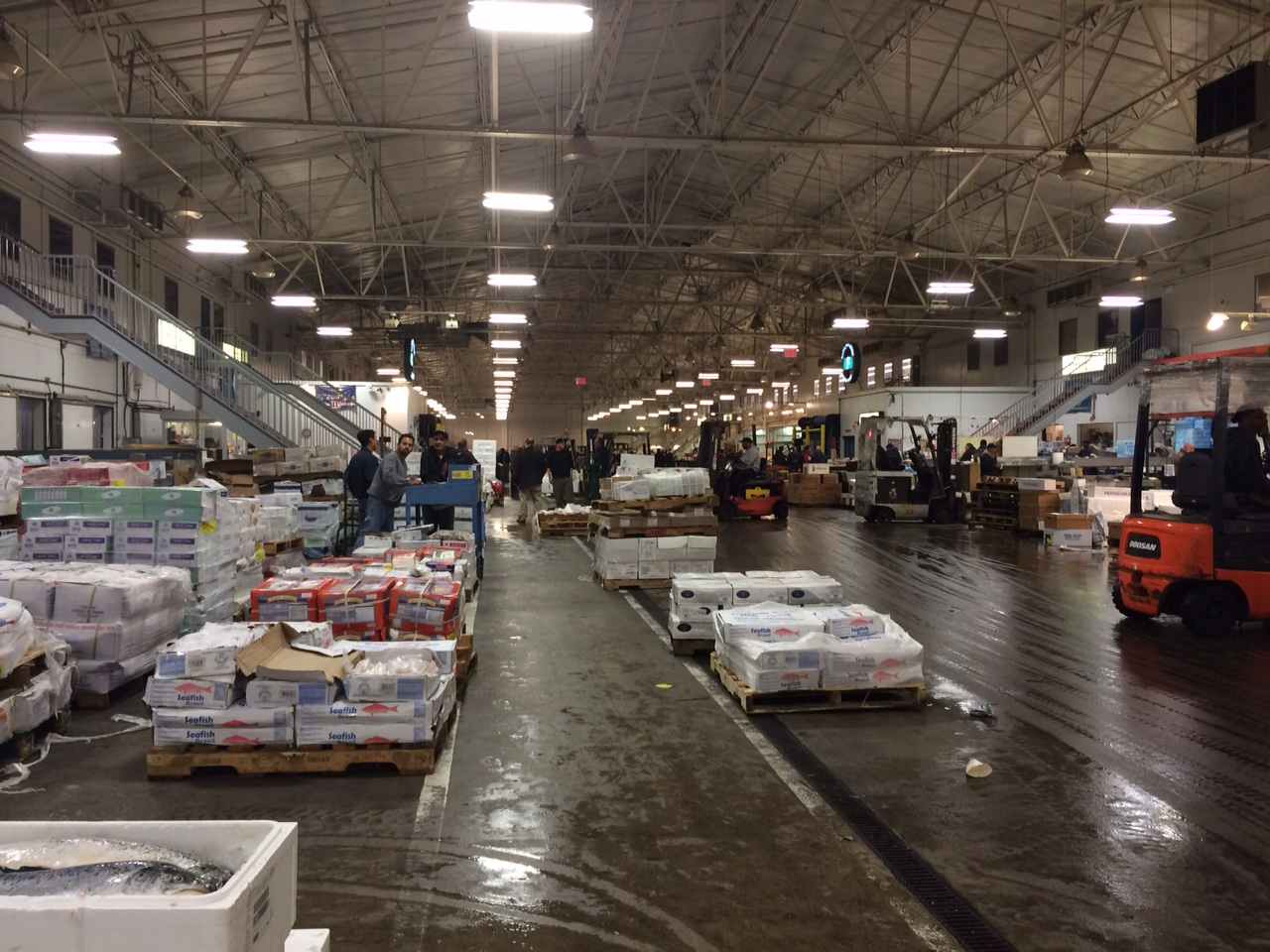 New fulton fish market 3am adventure in the bronx full for Fulton fish market online