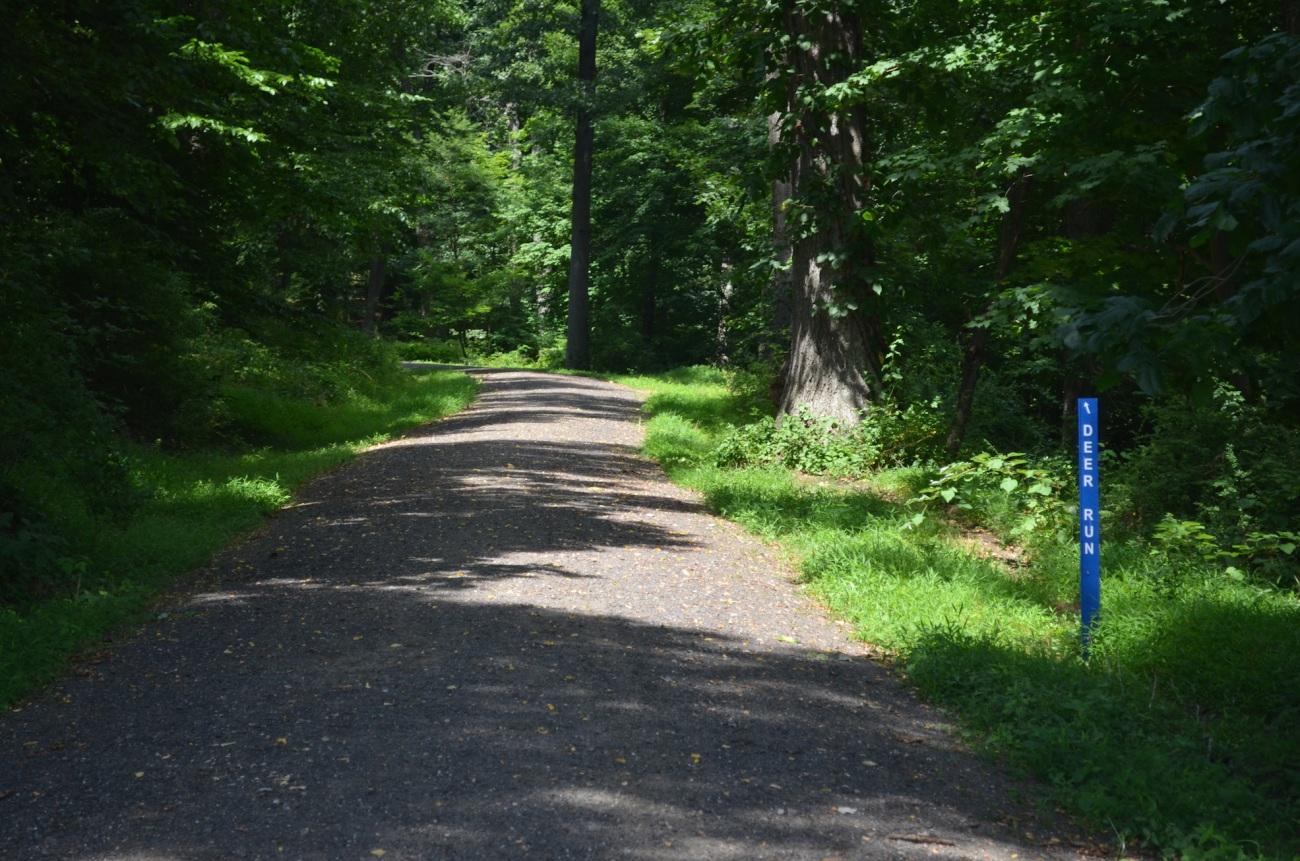 Hiking Upstate New York