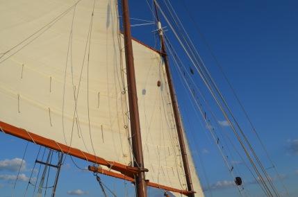 Sunset Cruise on the Charleston Harbor