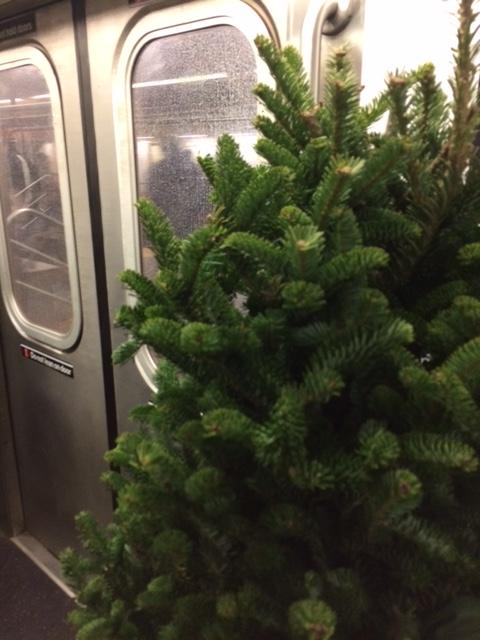Christmas Tree On A Subway