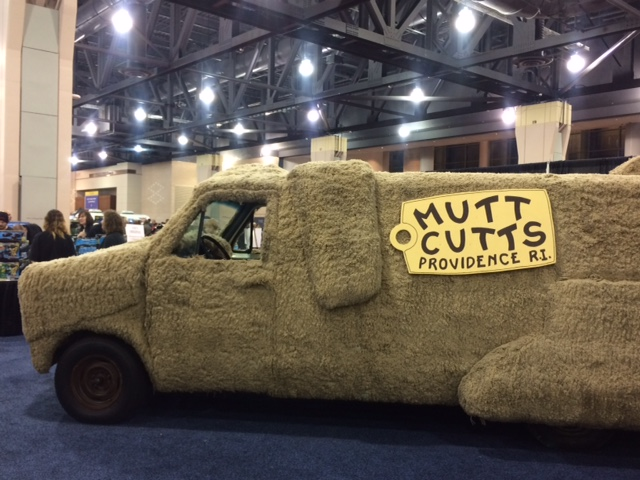 mutts-cutts-from-dumb-and-dumber