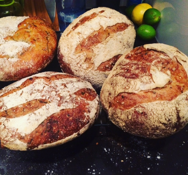 Freshly Baked Loaves of Ramp SourdoughJPG